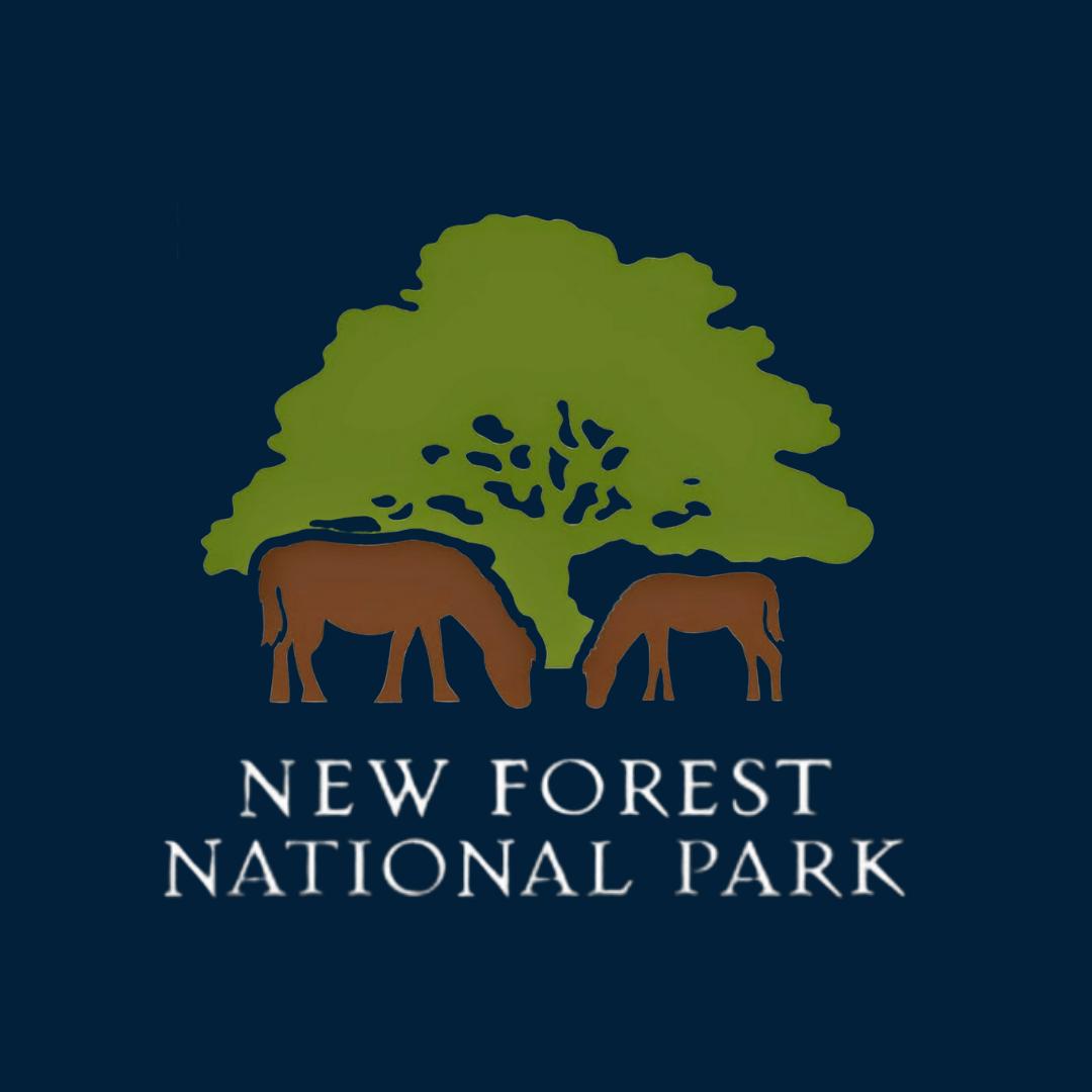 NEW FOREST NATIONAL PARK